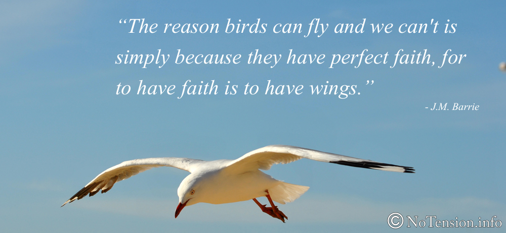 Quotes About Flying Birds 49 Quotes