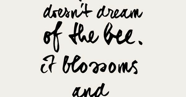 Bee Quotes: Quotes About Three Bees (25 Quotes