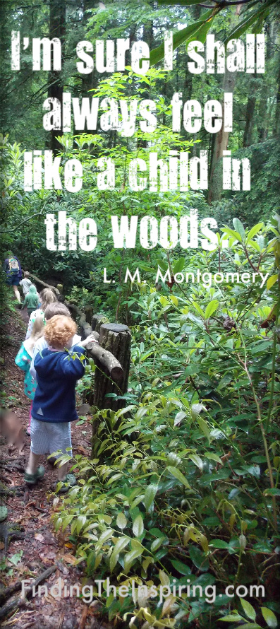 Quotes about Walk In The Woods (37 quotes)