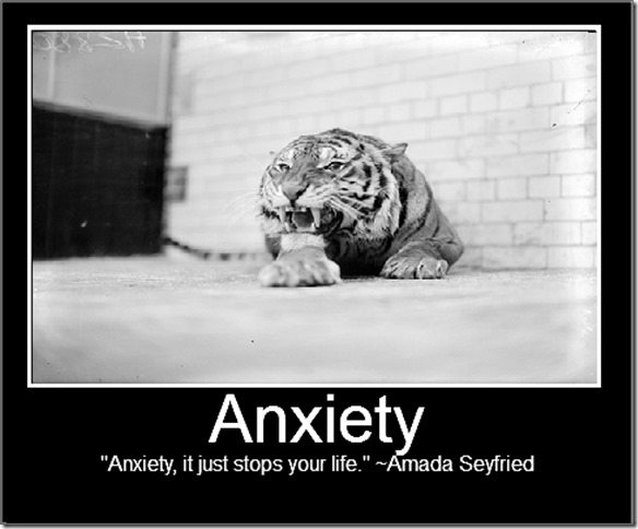 Quotes About Anxiety Funny 26 Quotes