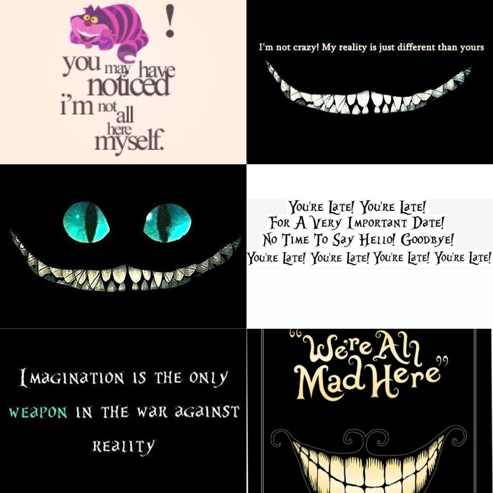 Quotes About Crazy Imagination 29 Quotes