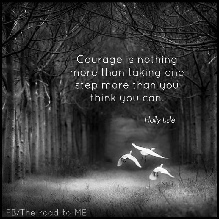 Quotes About Courage And Valor 28 Quotes