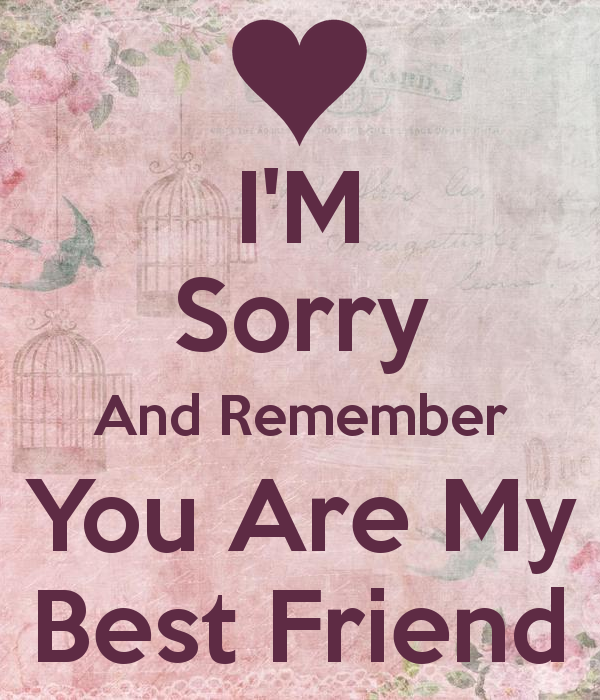 Quotes About Sorry To Friends 60 Quotes