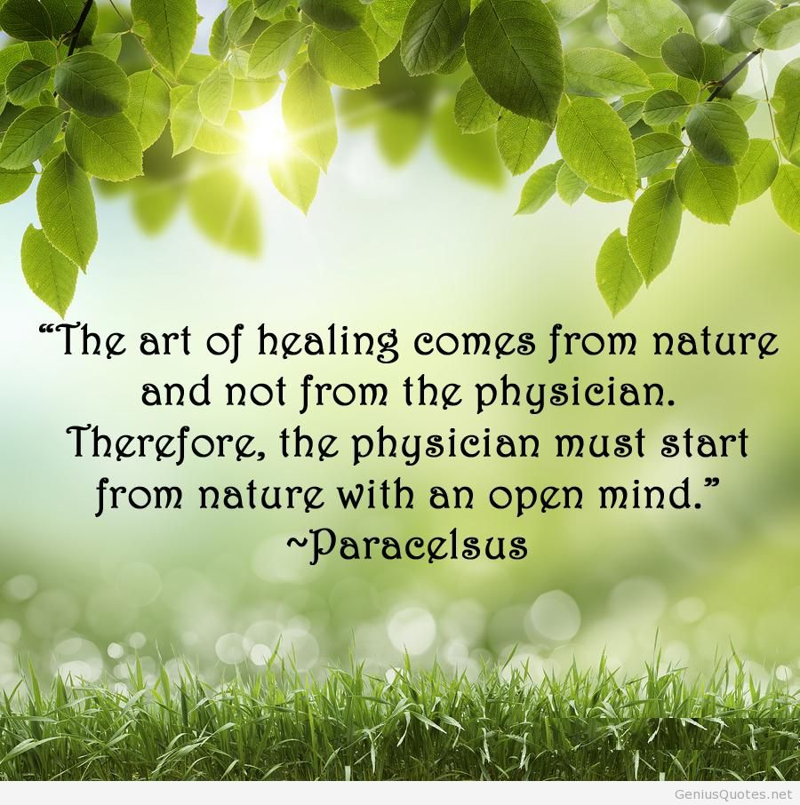 Quotes About Art In Nature 309 Quotes