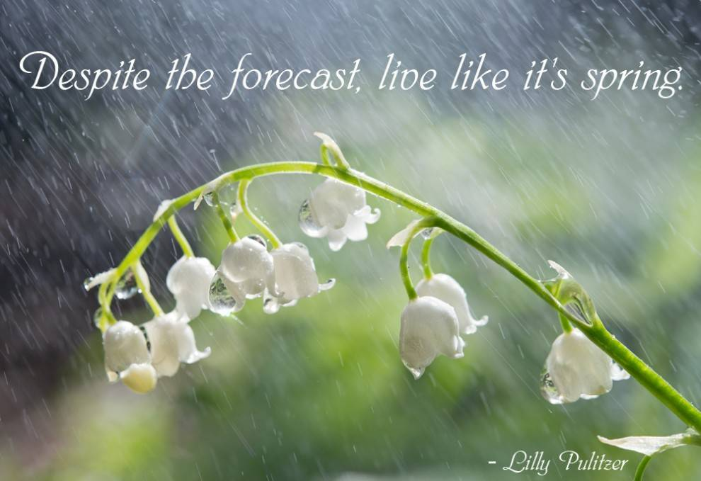 Quotes about Spring Rain (35 quotes)