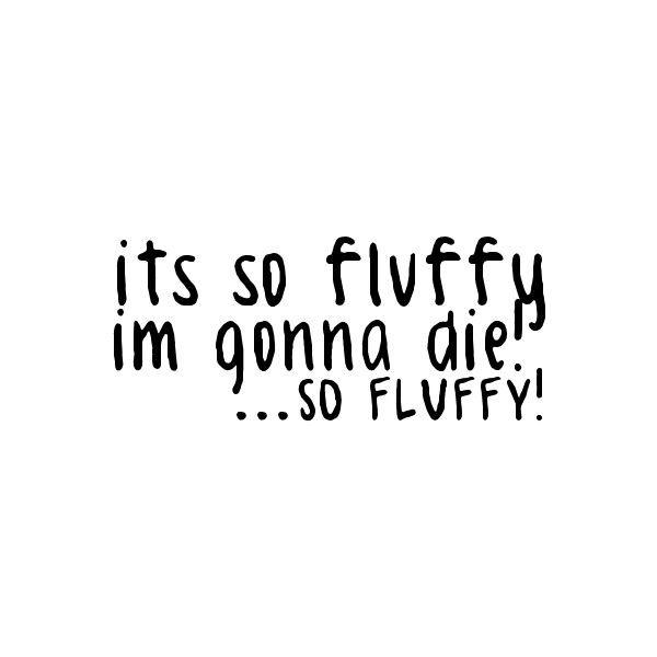 Quotes bunny fluffy feet hot shots Block: Harley