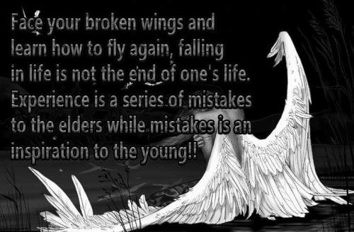 Quotes About Angel Wings (55 Quotes