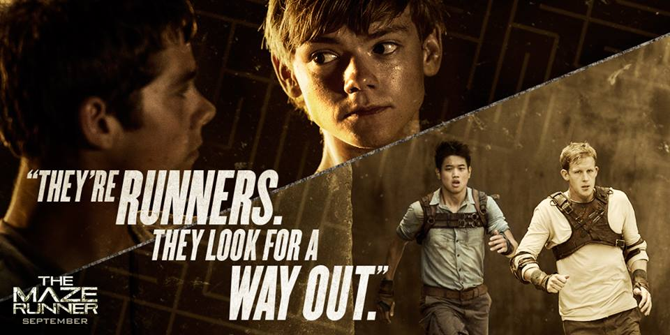 Quotes about Maze Runner (31 quotes)