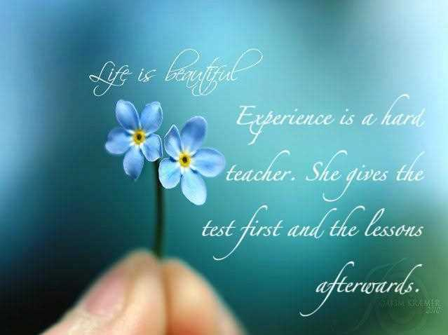 Quotes About Beautiful Experiences 53 Quotes