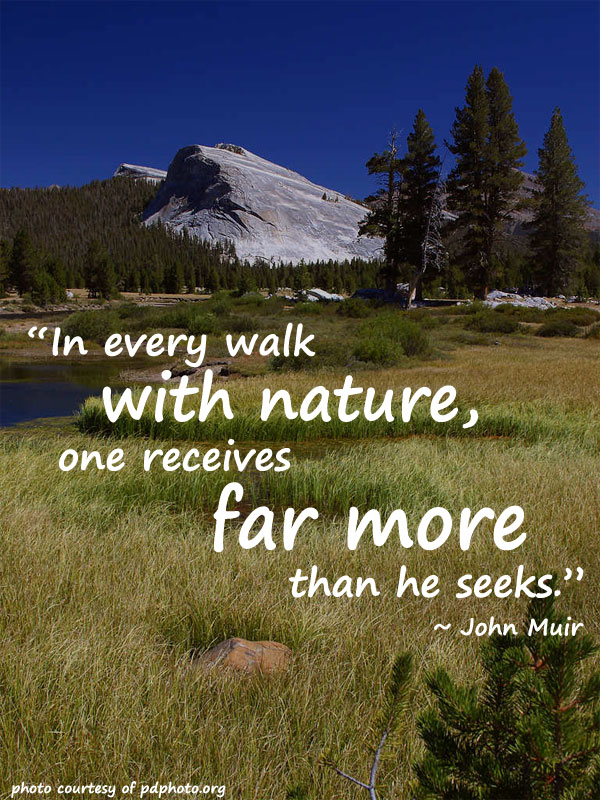 Quotes About National Parks 52 Quotes