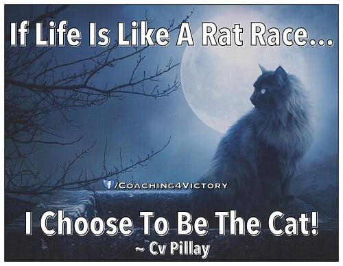 Quotes About Rat Race 91 Quotes