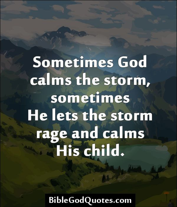 Quotes about After the storm (54 quotes)