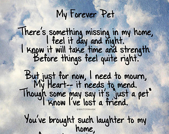 Quotes about Pet Loss (61 quotes)