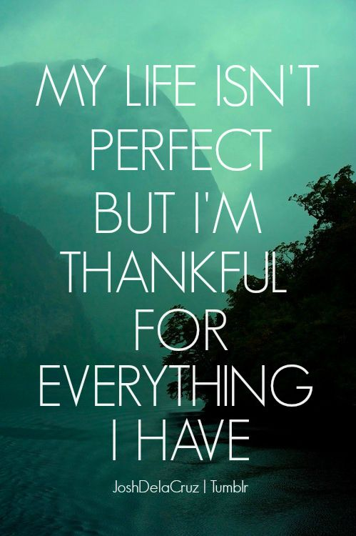 quotes about grateful for life quotes