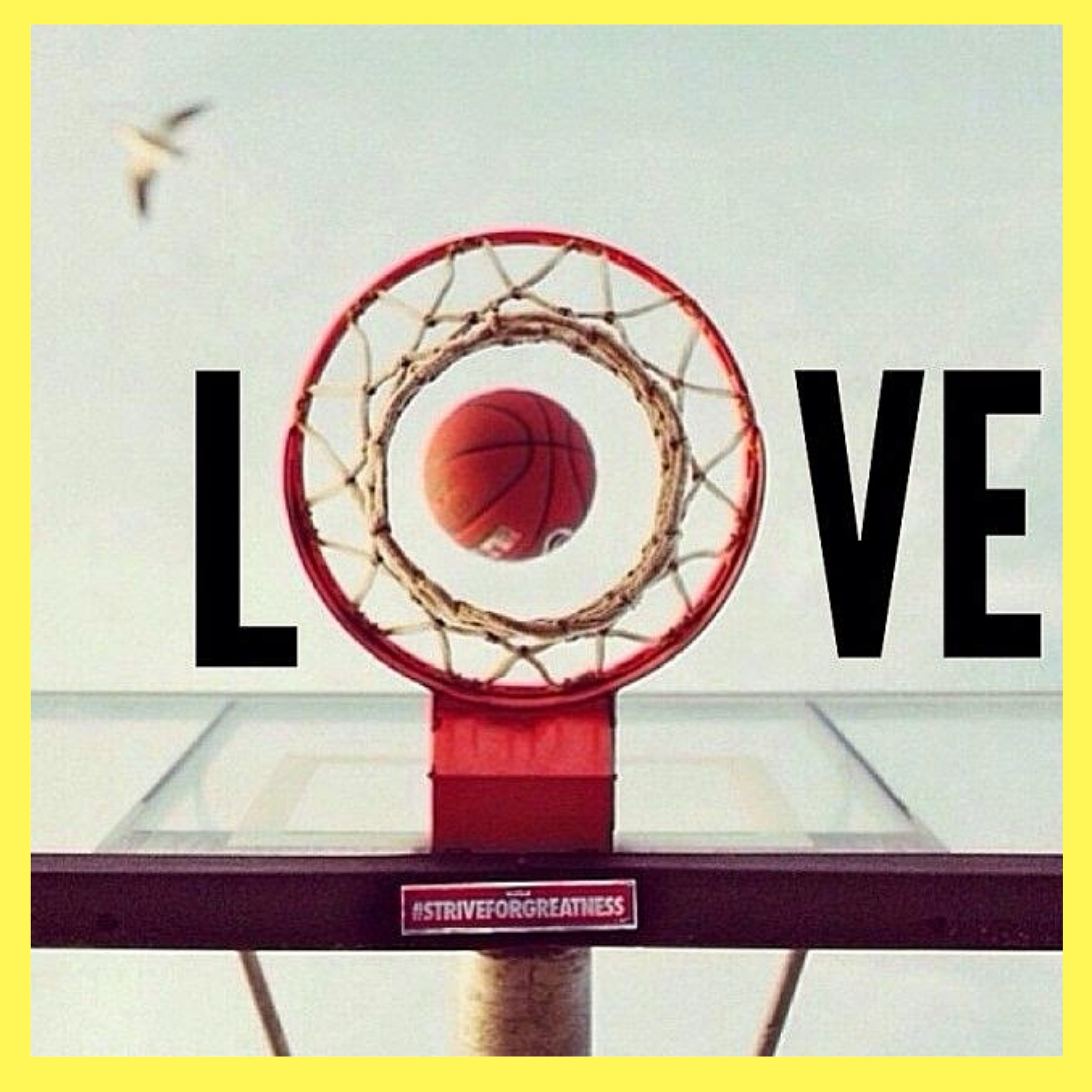 Quotes about Love And Basketball (7 quotes)