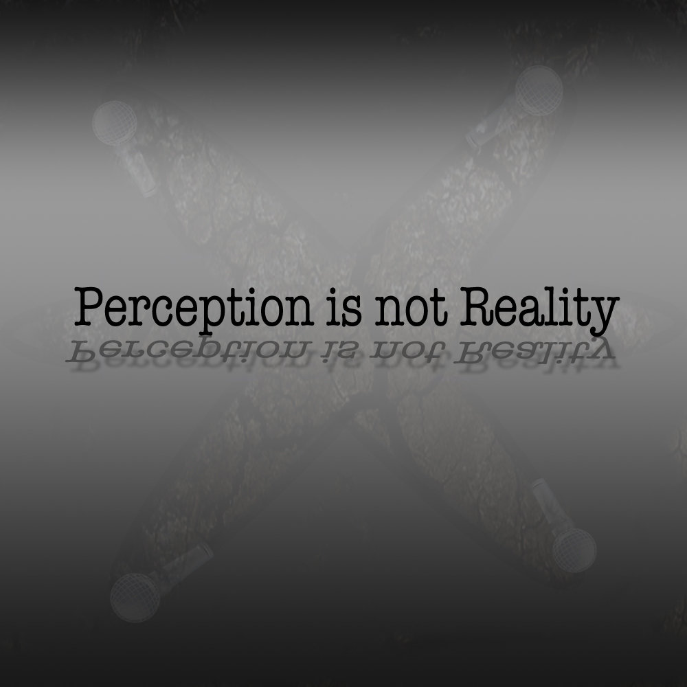 reality is a perception that organizes how Perception customers have of their interaction with an organization why is it a perception when the word experience is defined as practical contact with and observation of facts or events.