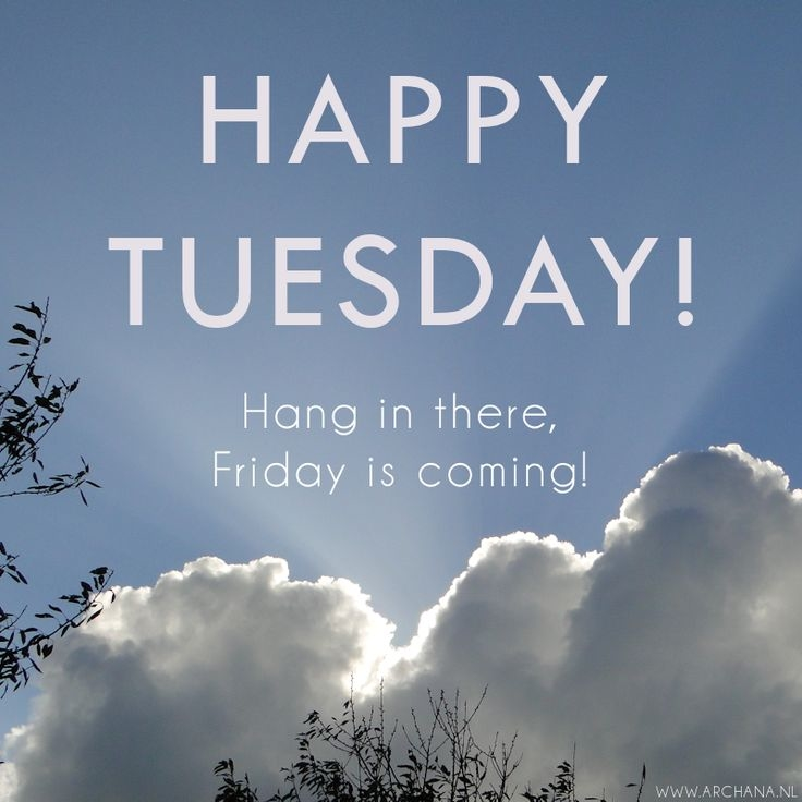 quotes about tuesday quotes