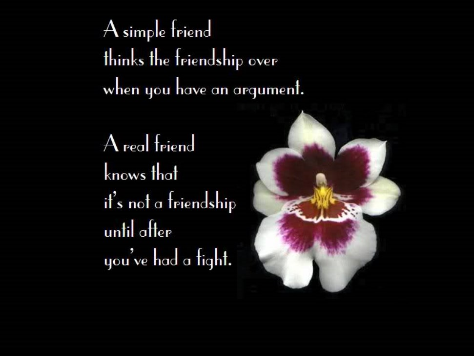 quotes about recent friendship quotes