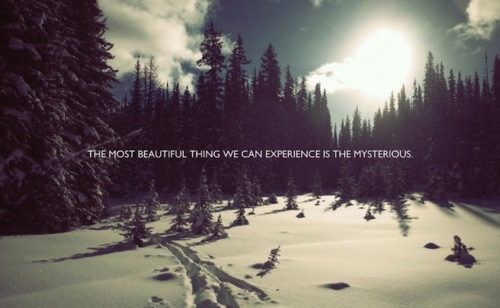 Quotes About Landscape Beauty 60 Quotes Adorable Quotes About Landscape