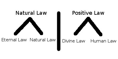 natural law vs positive law essay (essay by shannon holzer) books on the topic of this essay may be found in the imaginative conservative the division.