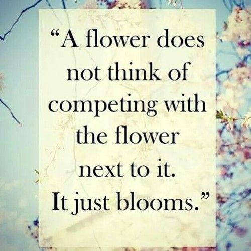 Quotes about ugly flowers 26 quotes httpzenithquotesbusiness30 best flower quotes mightylinksfo