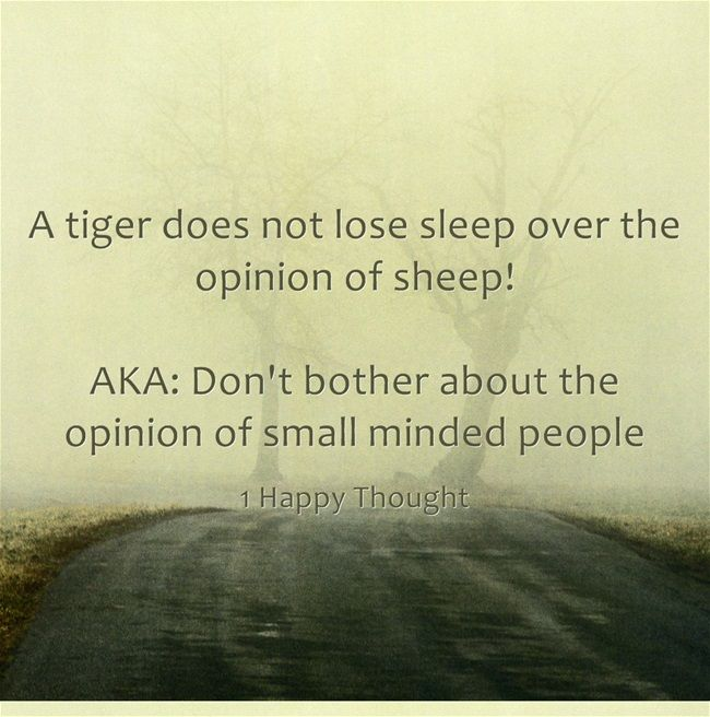 Quotes About Small Mindedness 36 Quotes