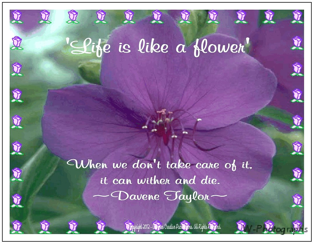 Quotes About Life Like A Flower 40 Quotes