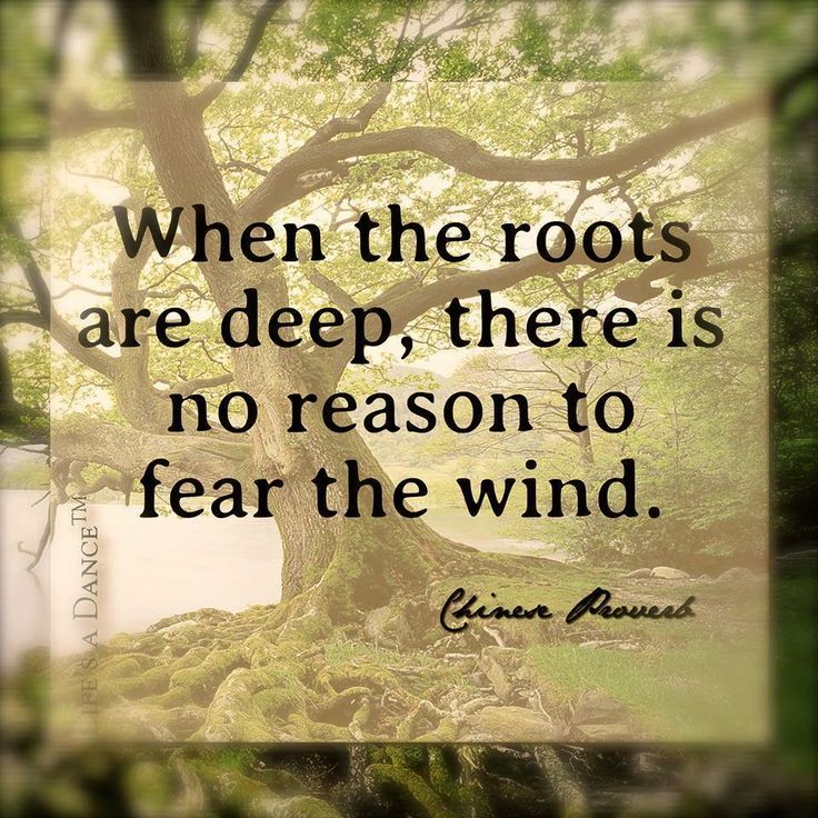 Quotes About Deep Roots 85 Quotes