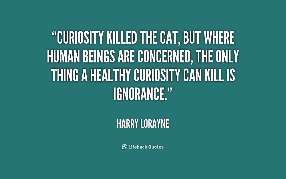 Quotes About Curiosity Killed The Cat 36 Quotes