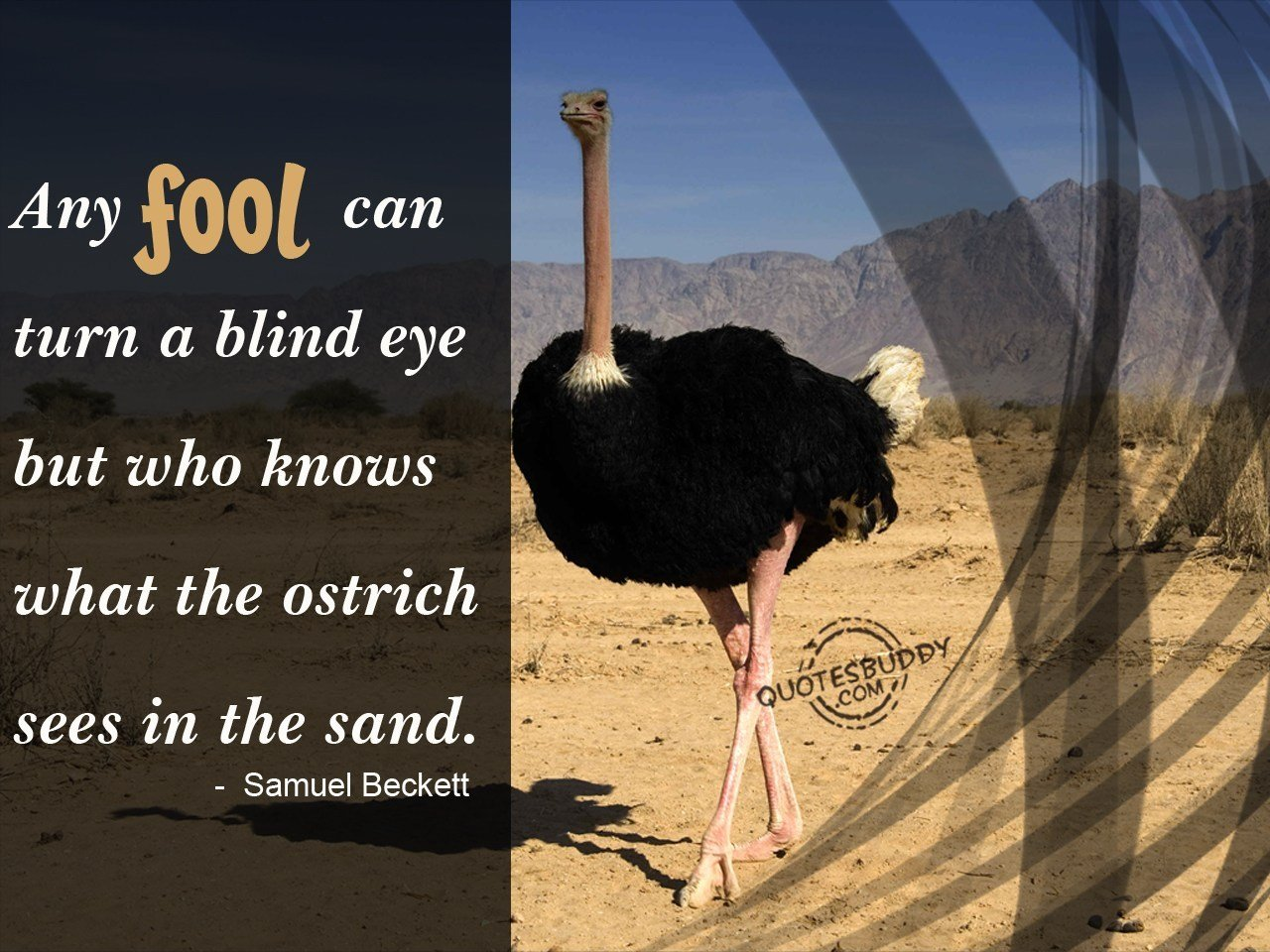 Quotes About Blind Eye 132 Quotes