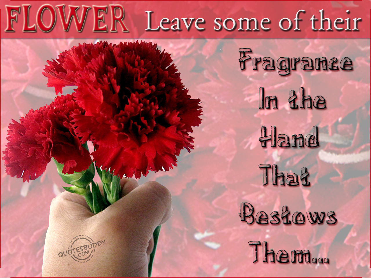 Quotes About Life Using Flowers 20 Quotes