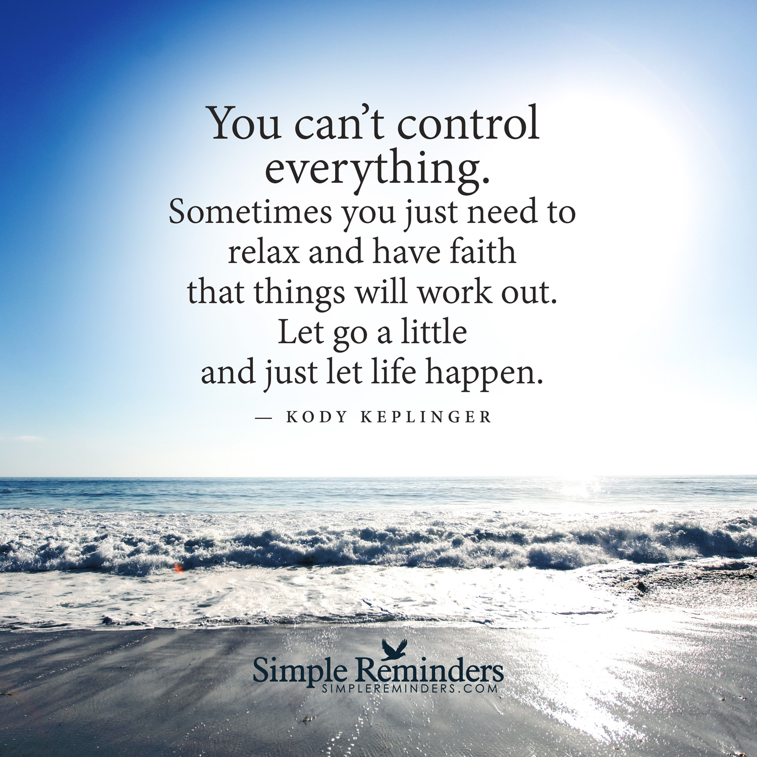 Quotes About Things You Cannot Control 20 Quotes