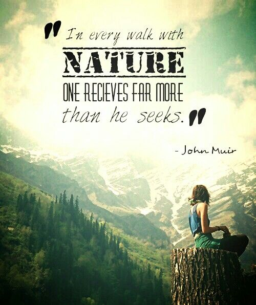 Quotes about Nature trip (33 quotes)