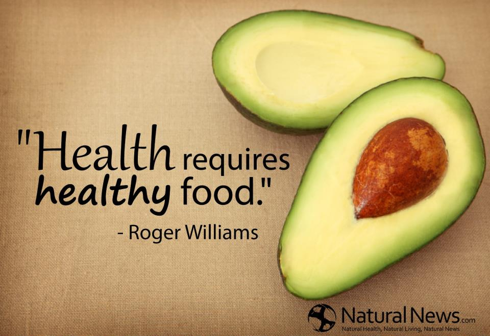 Quotes about Health Food (111 quotes)