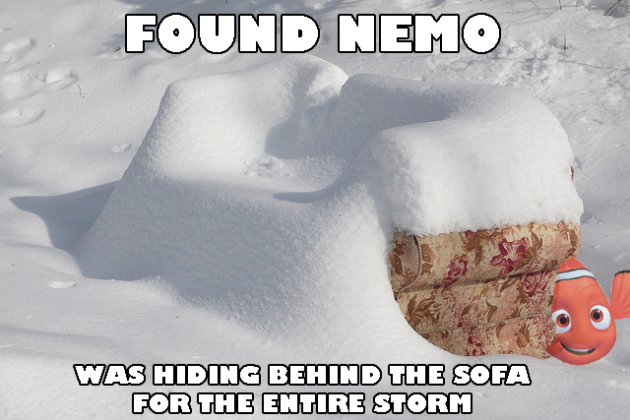 Quotes about Snow Storms (21 quotes)