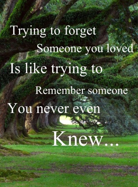 Quotes About Forgetting Someone 37 Quotes