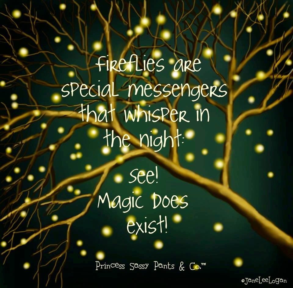 Quotes About Fireflies 42 Quotes