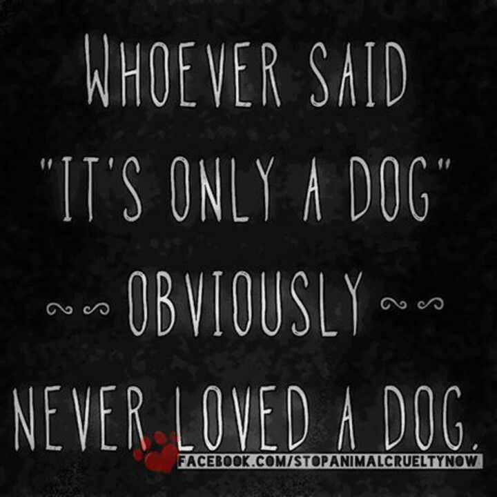 Quotes About Love My Dog 60 Quotes Enchanting I Love My Dog Quotes