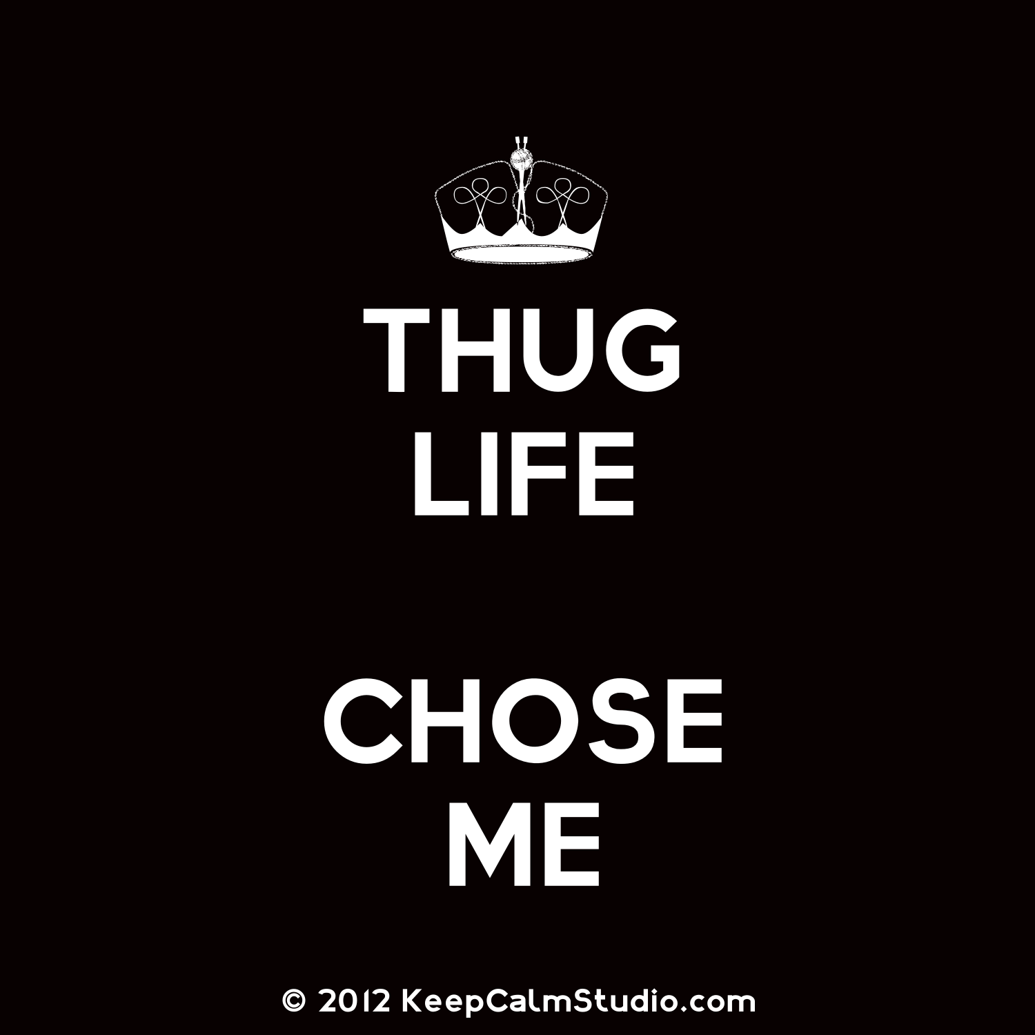 Quotes about Thug Life (5 quotes)