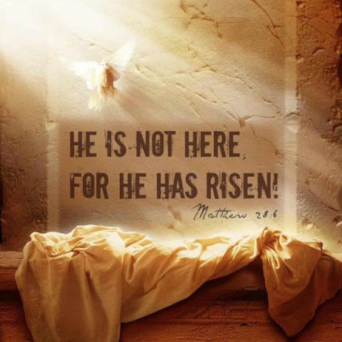 Quotes about Empty tomb (17 quotes)