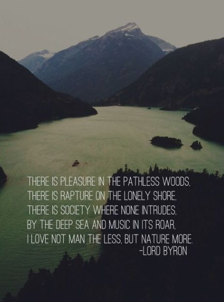 Quotes about Nature into the wild (16 quotes)