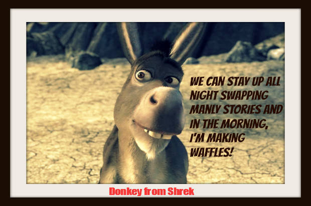 Funny Pictures Of Donkey From Shrek