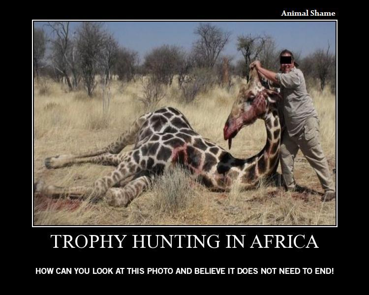 Quotes About Hunting Wild Animals 23 Quotes