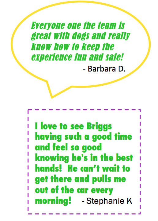 Daycare Quotes Magnificent Quotes About Daycare 18 Quotes