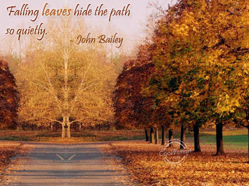 Quotes About Falling Leaves 62 Quotes