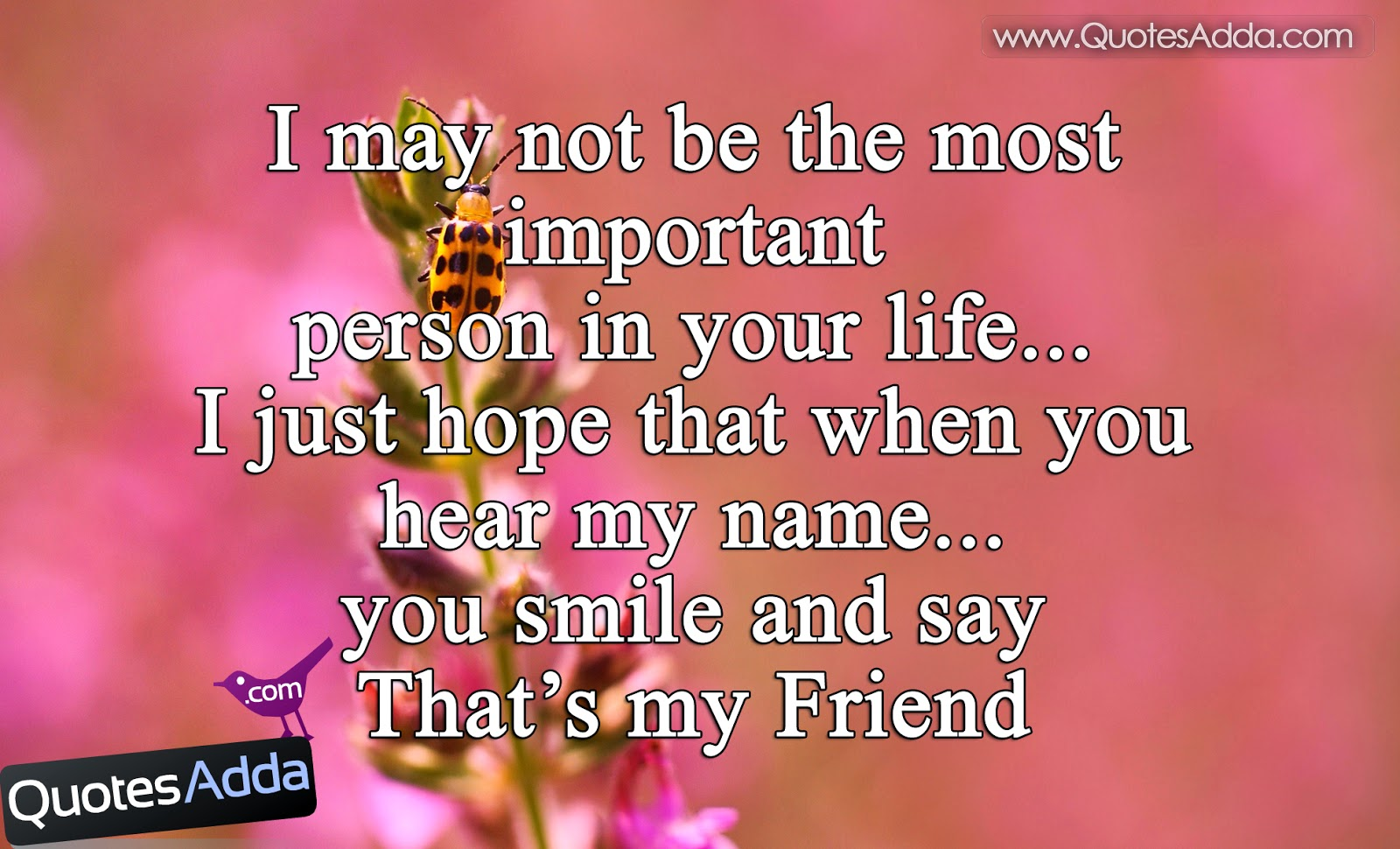 quotes about best friends english quotes