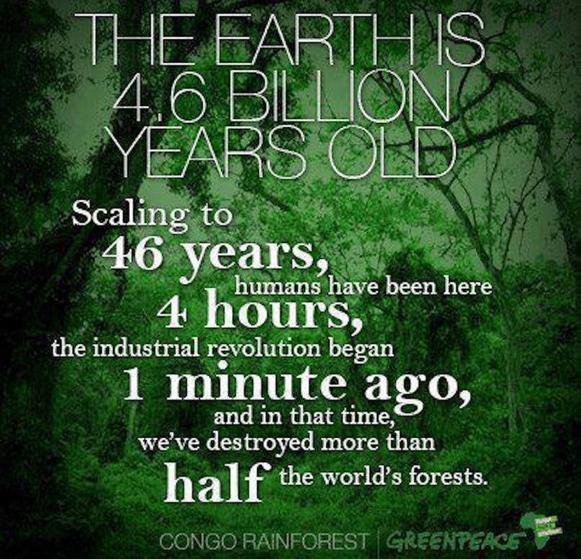 quotes about amazon rainforest quotes
