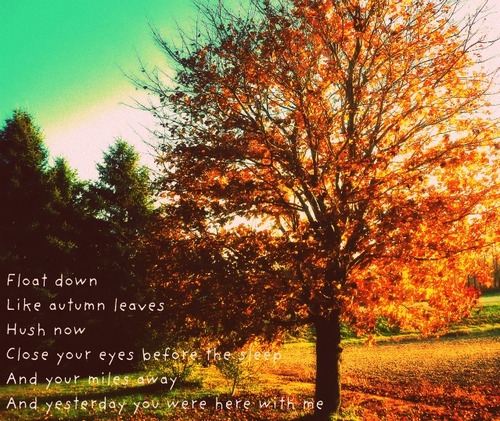 Swept Away Like Autumn Leaves By Gale >> Quotes About Autumn Leaves 96 Quotes