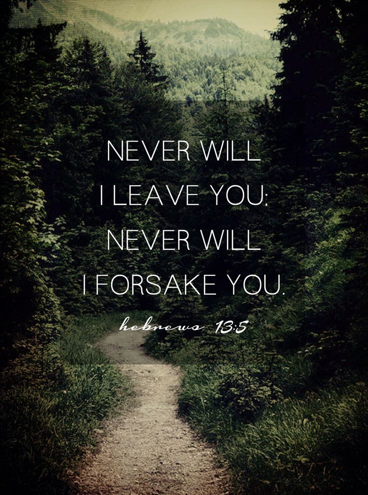 Quotes About Forsake 110 Quotes