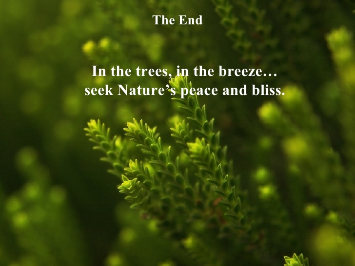 Quotes about Nature short 44 quotes